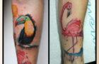 Gyönyörű színes tetoválások elérhető árakon