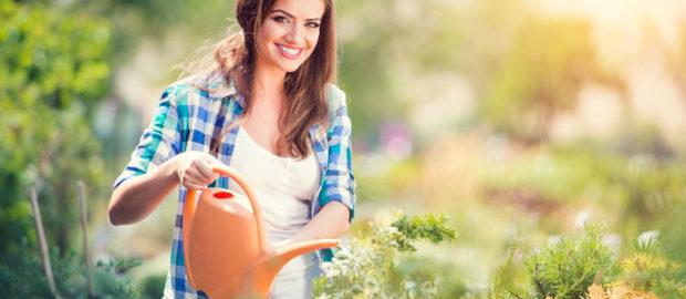 Remek áron igényelhet szakszerű kertfenntartást.