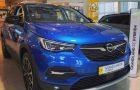 Opelt vásárolna kereskedésből?